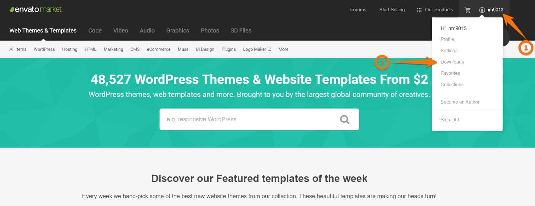 How to install a premium wordpress theme
